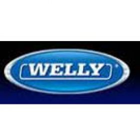 Profile picture of Welly