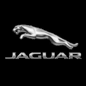 Profile photo of Jaguar
